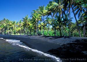 Punalu_u_Black_Sand_Beach.jpg