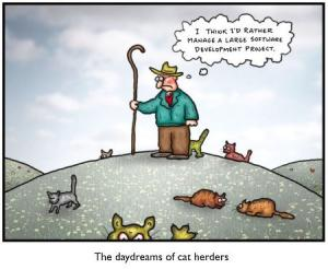 herding-cats.jpg