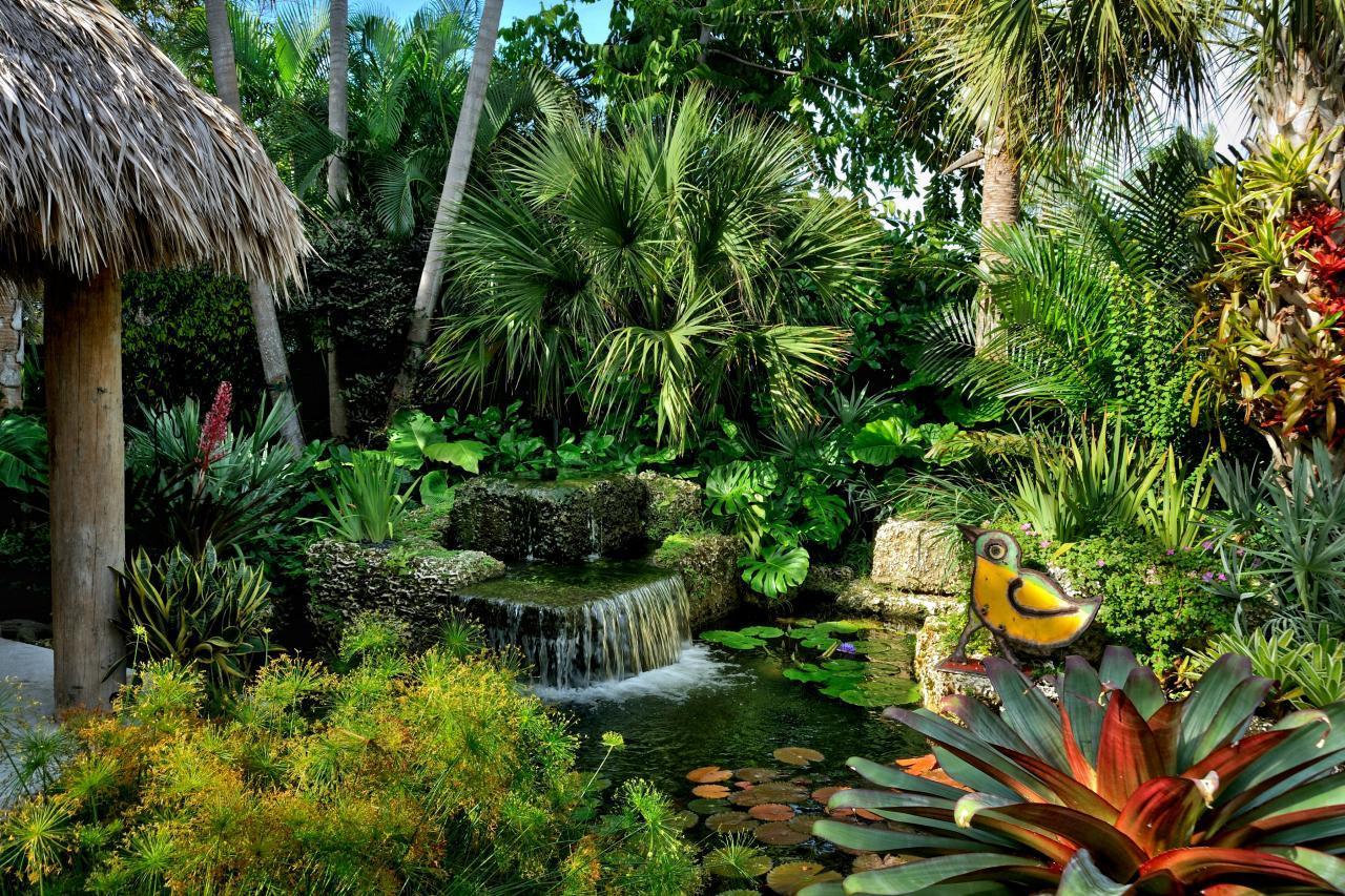 Landscape Design Dilemma After Palm Loss Discussing Palm