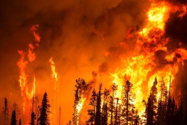 073016_pioneer_fire_inciweb.jpeg.f483d00