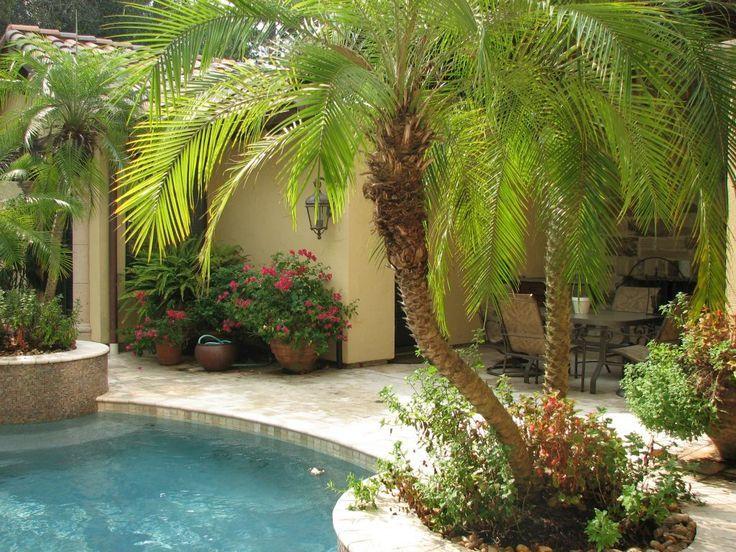 fedcbf8cfca827196bf1f269baa735d8--pool-landscaping-backyard-pools.jpg