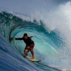 Mark M @ S. Oceanside palms