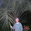 A BEAUTIFUL PALM FARM for s... - last post by Elena B. Uruguay