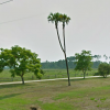 AP story on Fla Panhandle F... - last post by Bill H2DB