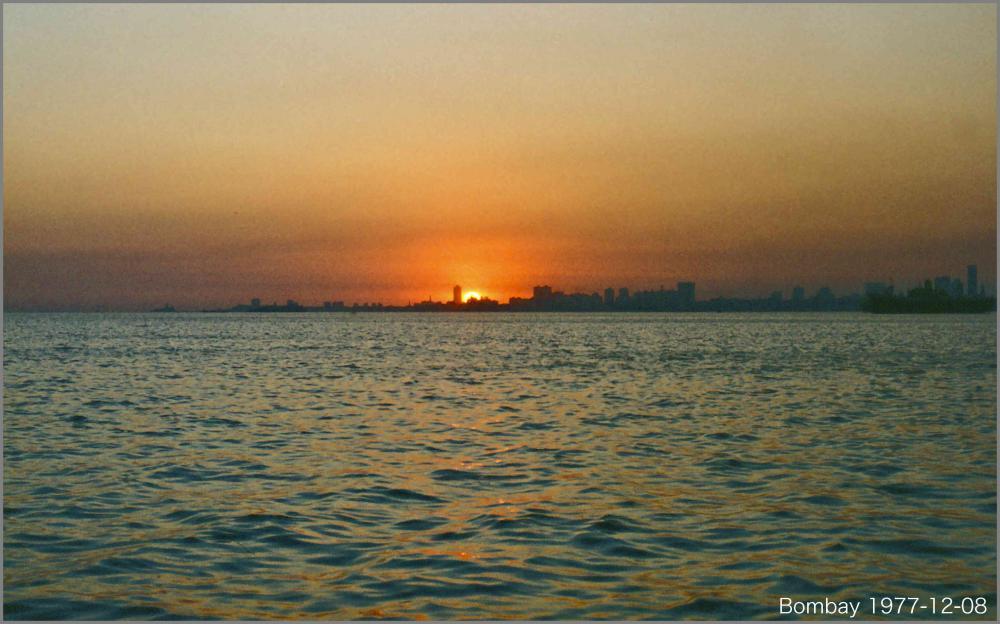 57608d2be3dcb_Bombay77D12-0512.thumb.jpg