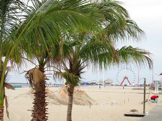 ocean-city-beach.jpg.4381ee32a6df30db7df