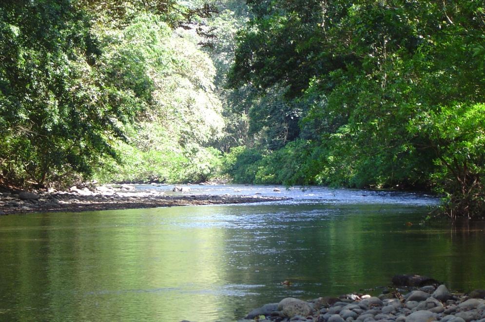 River Machuca 01.jpg