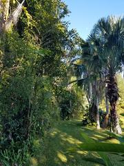 Brisco Gardens