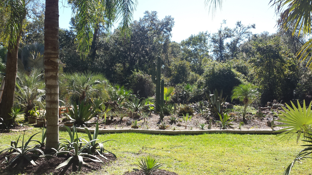 0007_Succulents_Garden_1600.jpg