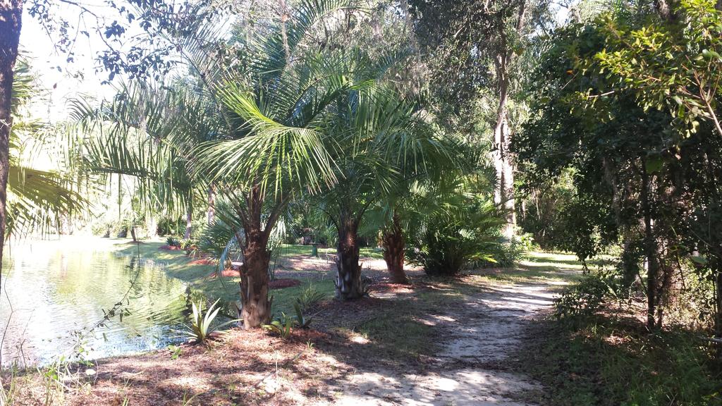 0014_Pond_Shoreline_Path_1600.jpg