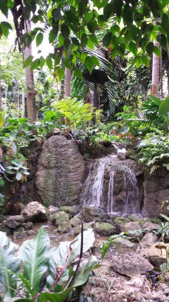 20181226_140204_Waterfall_1600.jpg