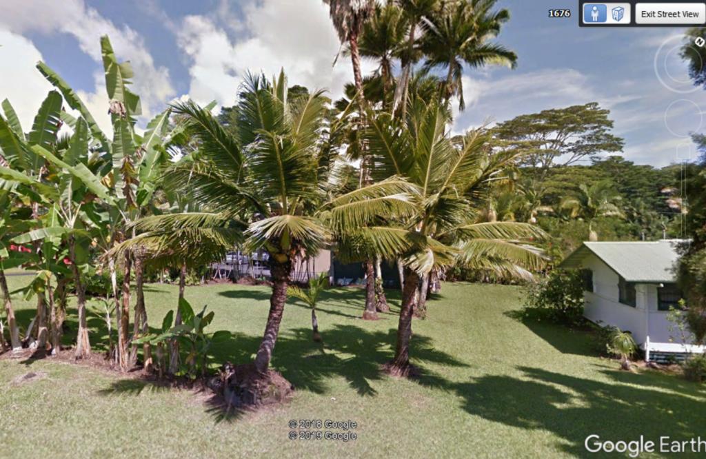 Fiji_dwarf.thumb.PNG.0cd18cc23c88ee9eb45c57570550e134.PNG