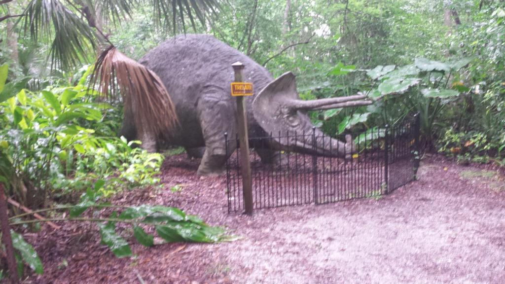 0015_20190608_104201_SMG_triceratops_1600.jpg