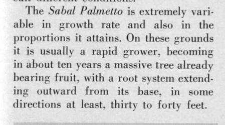 Dent smith 1963 SAPA roots.png