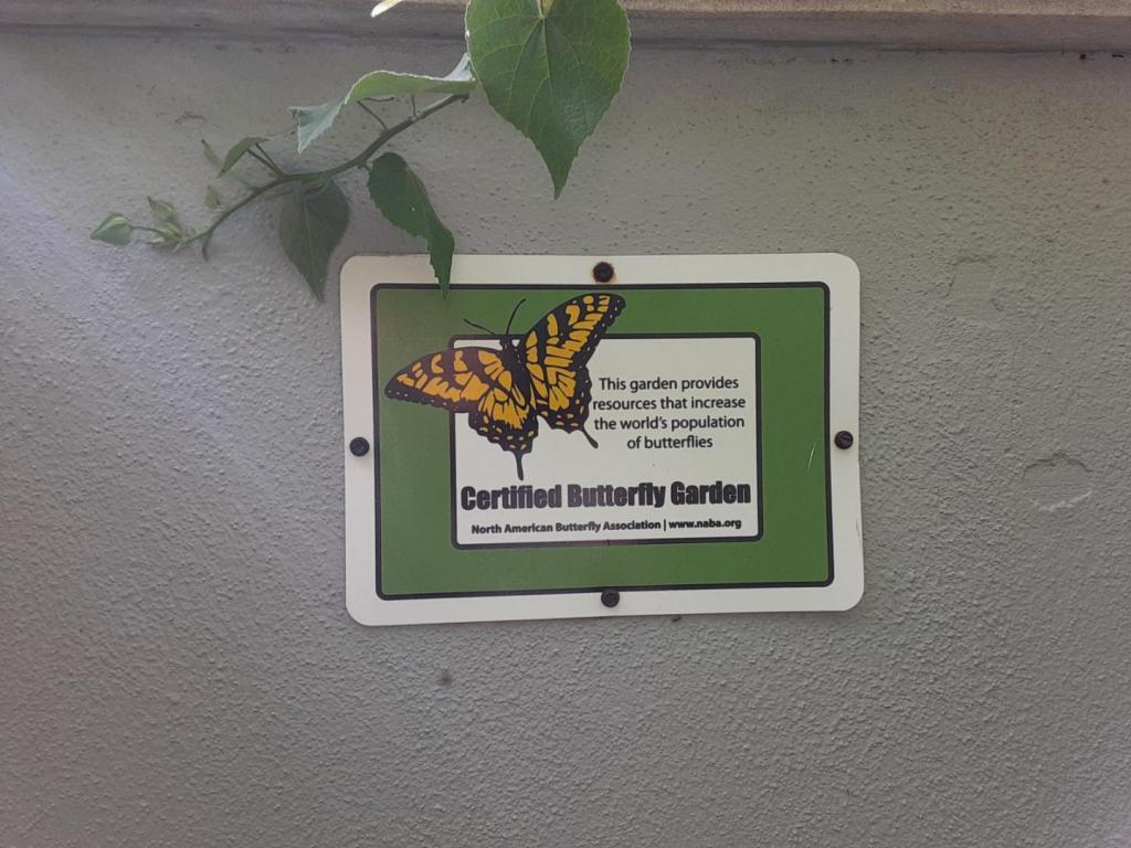 0036_Butterfly_garden_00.jpg