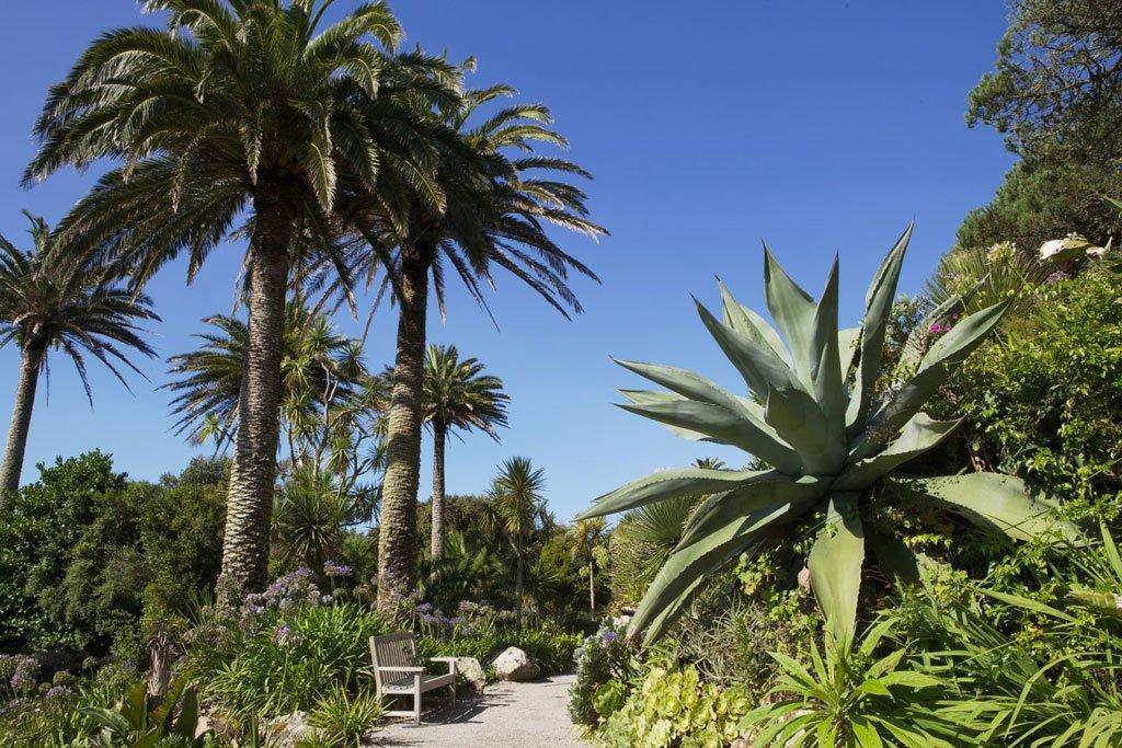 AN7128365Abbey-Gardens-Tres.jpg