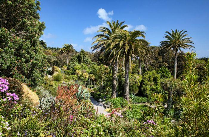 tresco-abbey-gardens-1.jpg