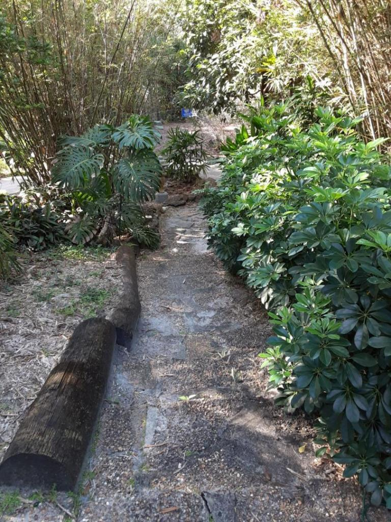 0003_Stone_Path_downhill.jpg
