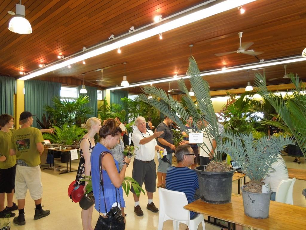 National Palm & Cycad Show, Australia, 7 – 8 March 2020