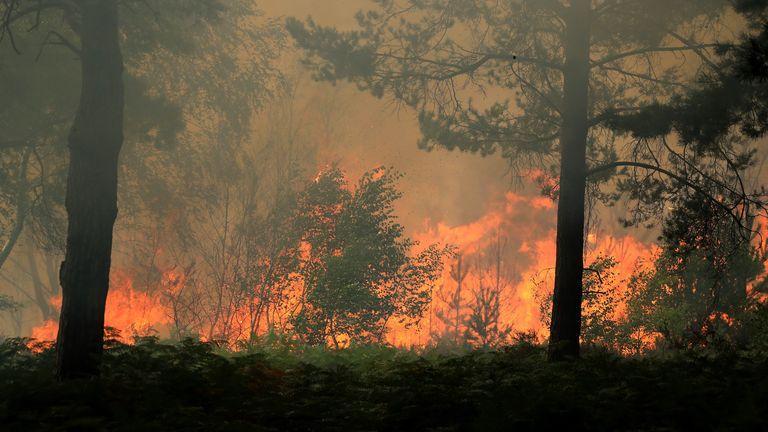 skynews-surrey-wildfire-fire_5061976.jpg.c98732c02a0e2ac5bb14b3d460574a43.jpg