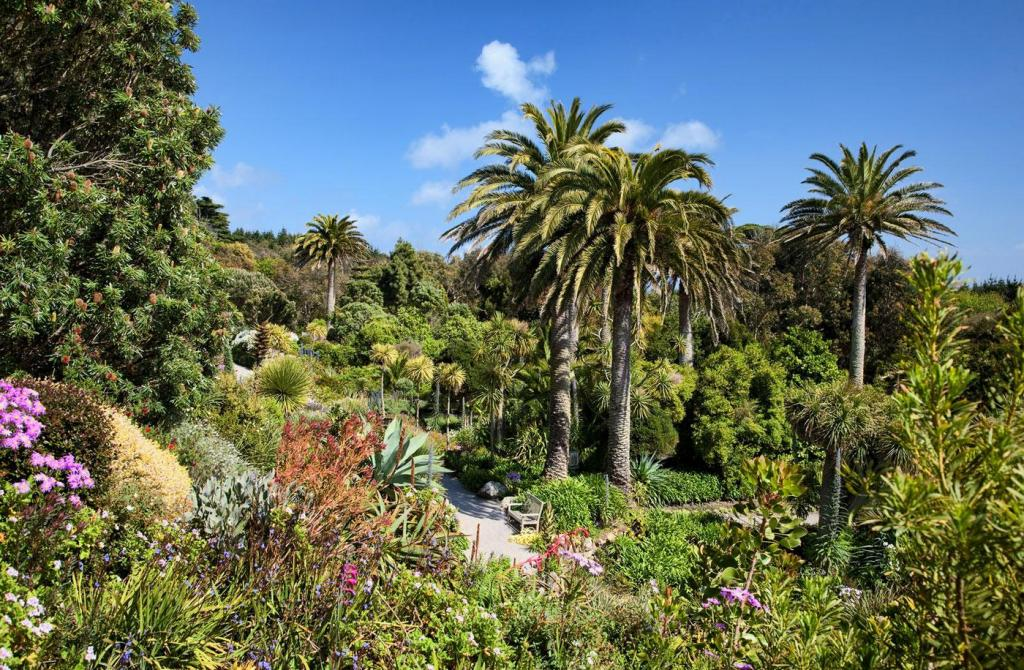 tresco-abbey-gardens.thumb.jpg.29afec012279ffb715a9cfdf533c6ec2.jpg