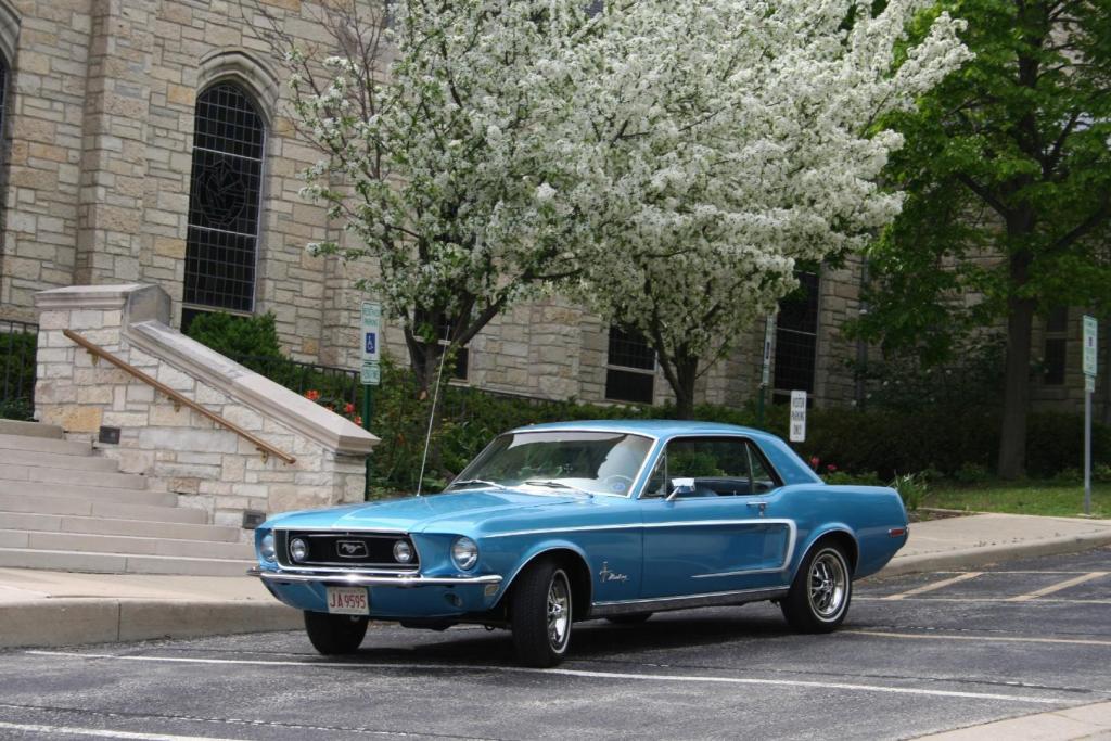 1968_Mustang_RMason.thumb.JPG.7e18a5daa87e989da71a55197be77e38.JPG