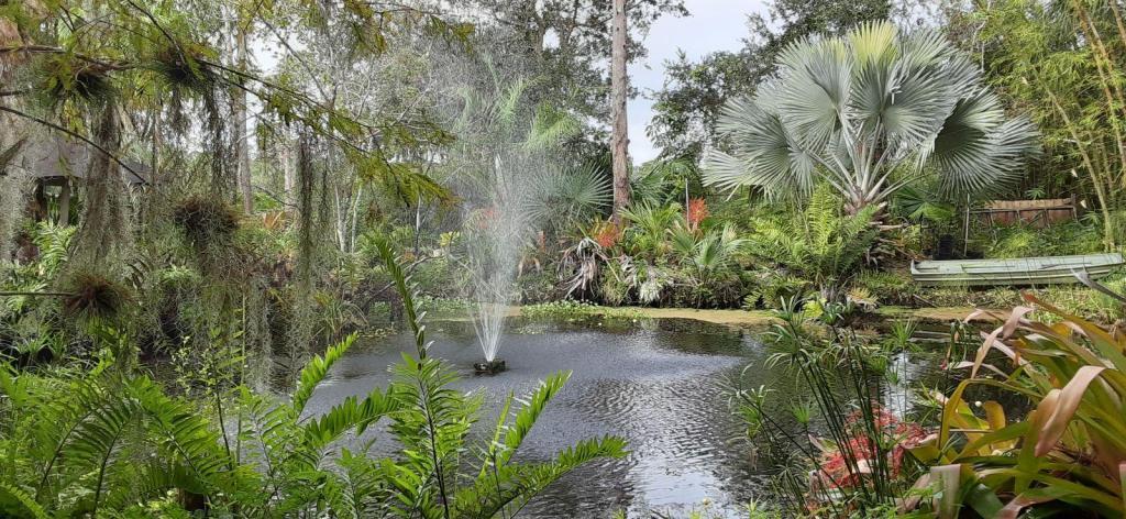 20201205_100431_Pond_Fountain_01.jpg