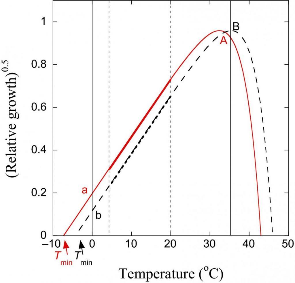 1325322052_soilmicrobialactivityvstemperature.thumb.jpg.bb1a7aa53721796bcfb5b84f076170c1.jpg