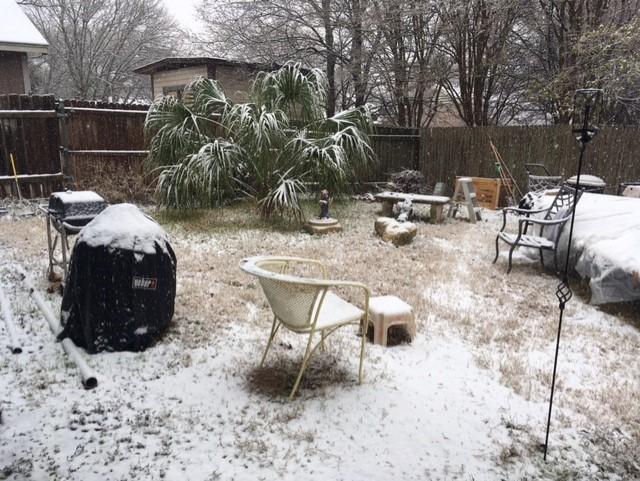 snowAustin.jpg.a8eef8c9cc2440c594fb72e1cc94ced6.jpg