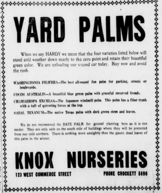 knox nursery advertisement 1917 palm trees.jpg