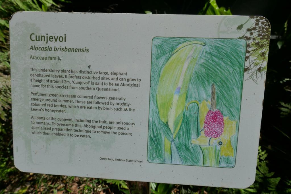 cunjevoi sign.jpg