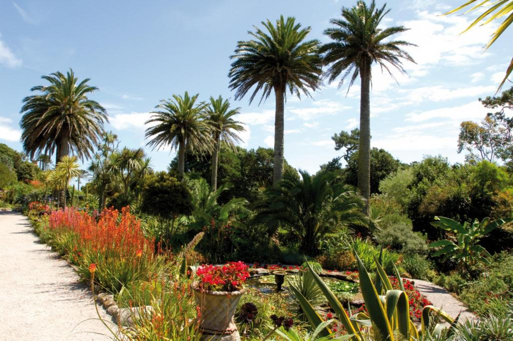 Abbey-Gardens-03.thumb.jpg.f65b7b63017a71a4867ed90938ec5384.jpg