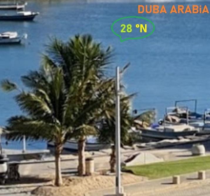 Arabia 28.jpg
