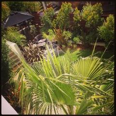 Palm garden alcove